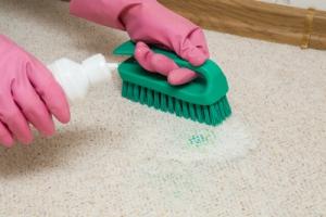 hĺbkové čistenie kobercov